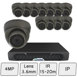 Discreet Dome IP Camera Kit