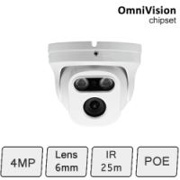HD-IP 4MP Eyeball Dome Camera (4MP, IR 25m, POE)
