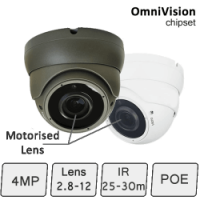 IP 4MP Eyeball Dome Camera (4MP, IR 25m, POE, Motorised Auto Focus Lens) | IP Camera
