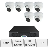 Discreet Dome Camera Kit | IP CCTV Kit